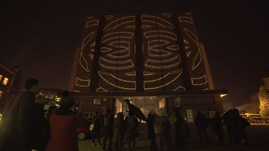 Projection by Makio&Floz on the facade of the Museum of natural sciences
